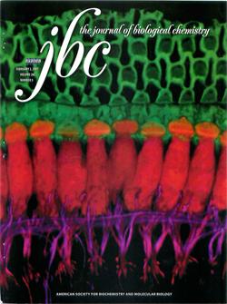 JBC, 2007