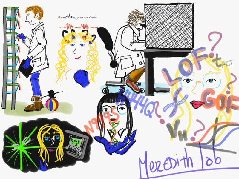 The Meredith Lab 2021 Illustration